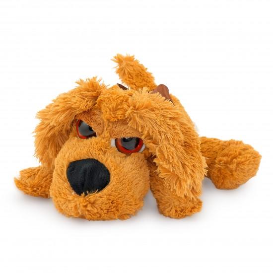 Плюшено куче Пако
